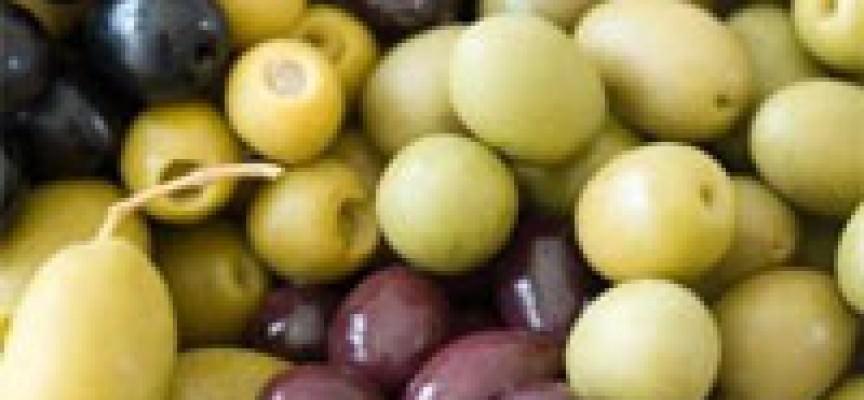 Legacoop segnala stato di crisi dell'olivicoltura in Calabria