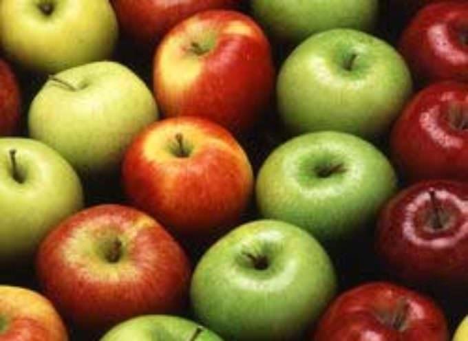 La mela fa bruciare calorie