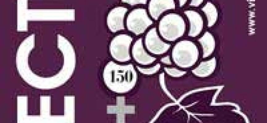 """L'allevamento del grappolo, ovvero il """"vino erectus"""""""