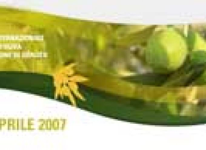 Liguria: Grande presenza delle aziende olivicole liguri al Sol 2009