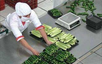 Lavoro: Il 97% dei lavoratori dice si al nuovo Contratto Nazionale del settore alimentare