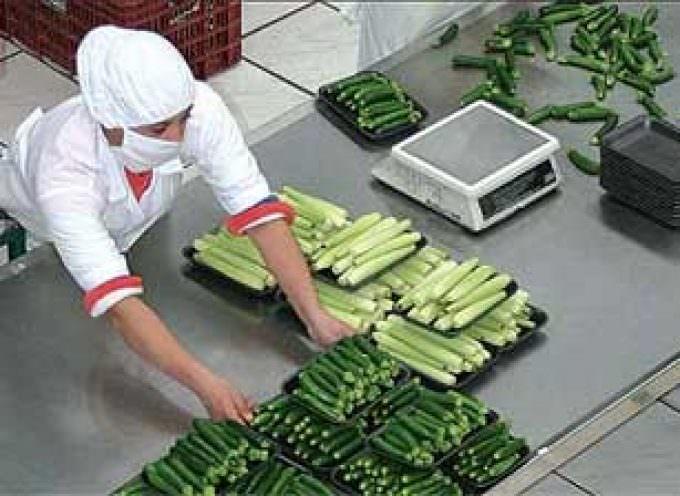 Ccnl alimentare, Uila-Uil: approvata la piattaforma unitaria per il rinnovo