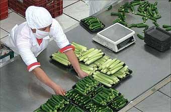 Servono aiuti concreti al comparto agroalimentare subito