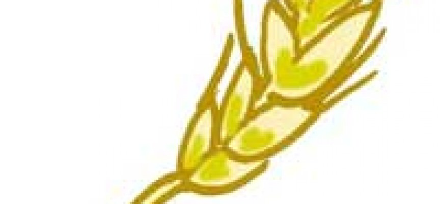 Celiachia: Conoscerla per riconoscerla