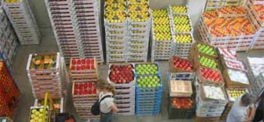 Ispettorato Centrale per il Controllo della Qualità dei prodotti agroalimentari