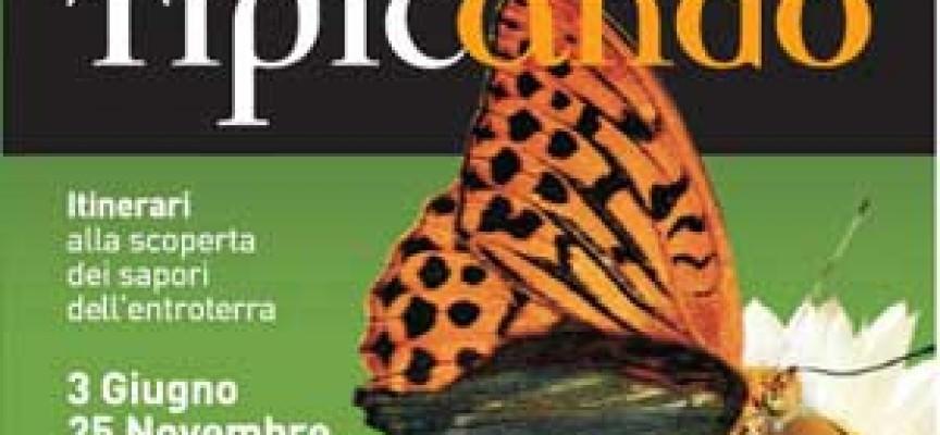 Ancona: Tipicando, itinerari alla scoperta dei sapori dell'entroterra