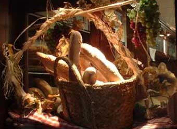 Cenni: «È ora che il pane toscano abbia la sua Dop»