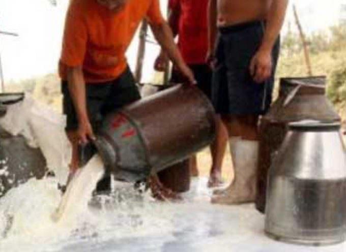 Primer caso en Hong-Kong dispara la alarma por leche en polvo envenenada