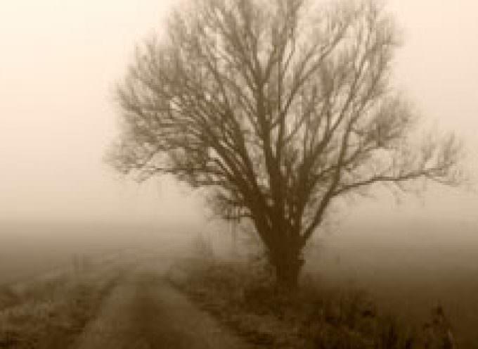 La falta de luz en otoño provoca depresión y trastornos alimenticios