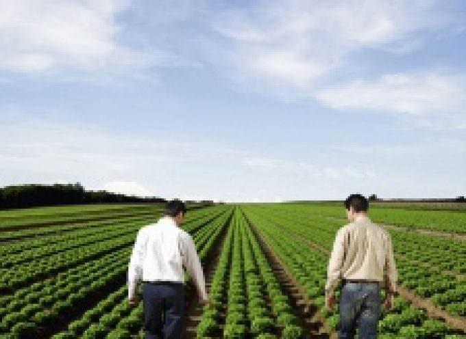Strategia Europa 2020: Italia e Francia puntano sull'agricoltura