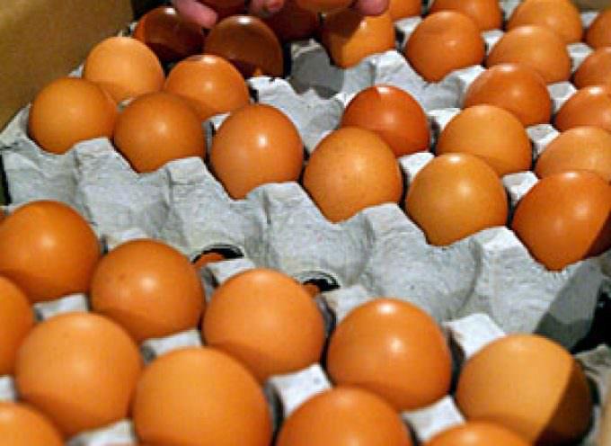 Hong Kong detecta melamina en huevos importados de China