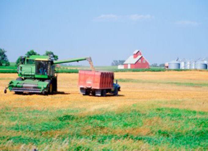 Cia: annata agraria 2008, si confermano le difficoltà per gli agricoltori