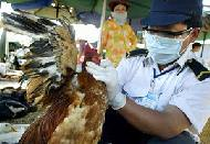 Record-level US support for bird flu programme