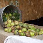 Agroalimentare, Dona (UNC): Ben vengano gli ortofrutticoli brutti!