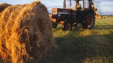 Agricoltura, con la crisi meno acquisti di macchinari
