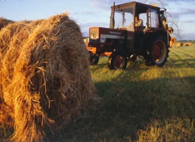 Servono interventi straordinari e tempestivi per impedire il tracollo dell'agricoltura