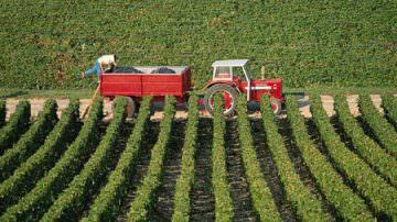 Finanziaria agricola: emendamenti positivi ma ancora insufficienti