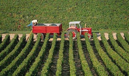 Finanziaria agricola: mancano i soldi per garantire quotidianità e sviluppo