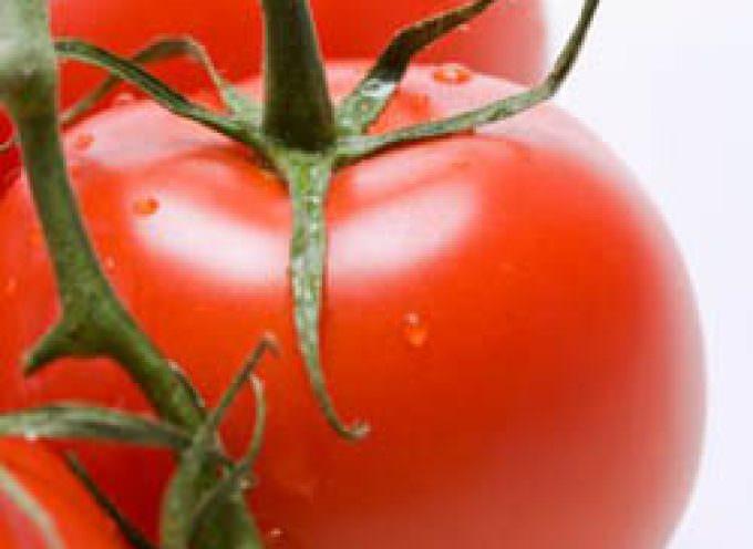 Made in Italy: per la prima volta nel piatto il superpomodoro contro l'invecchiamento