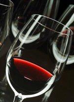 I vini del Piemonte, maestri delle Università USA
