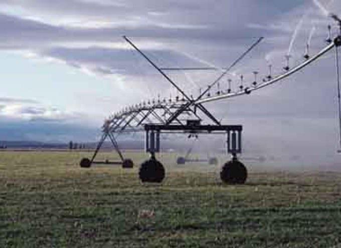 Agrofarma: la revisione direttiva 91/414 mette a rischio la produttività agricola