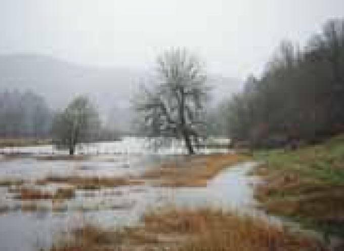 La pioggia battente e la neve alzano il livello dei fiumi. A Firenze l'Arno è salito di 2,65 metri in un giorno