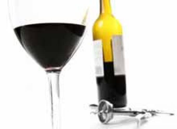 I Vini Perfetti 2009 e in Vino Veritas 2009