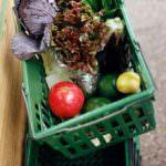 Inflazione, Cia: i prezzi alimentari non scendono