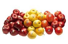 Continua la scuola di cucina di mele Val Venosta