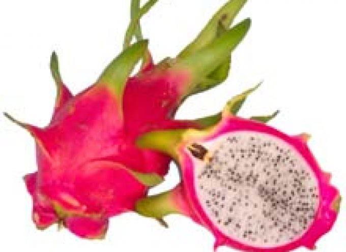 Aumentano del 10% le importazioni di frutta esotica