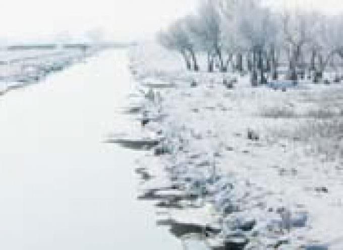 Neve e ghiaccio fanno annullare i mercati degli agricoltori