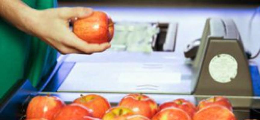 Prezzi, il maltempo non giustifica le speculazioni alimentari