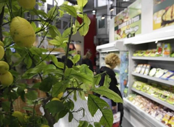 """MARCAbyBOLOGNAFIERE: presentato il primo """"convenience store"""" italiano"""