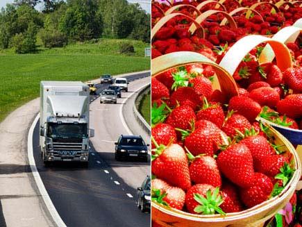 Il trasporto dei prodotti alimentari – Normativa