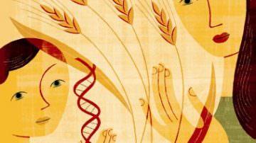 Che cos'è l'intolleranza al glutine? Cosa significa essere celiaci?