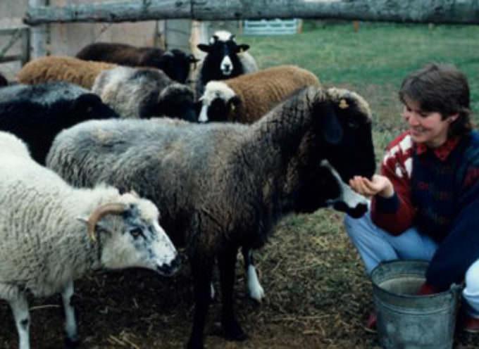 Lavoro, Coldiretti: Bene Sacconi sui familiari in campagna ed i voucher alle casalinghe
