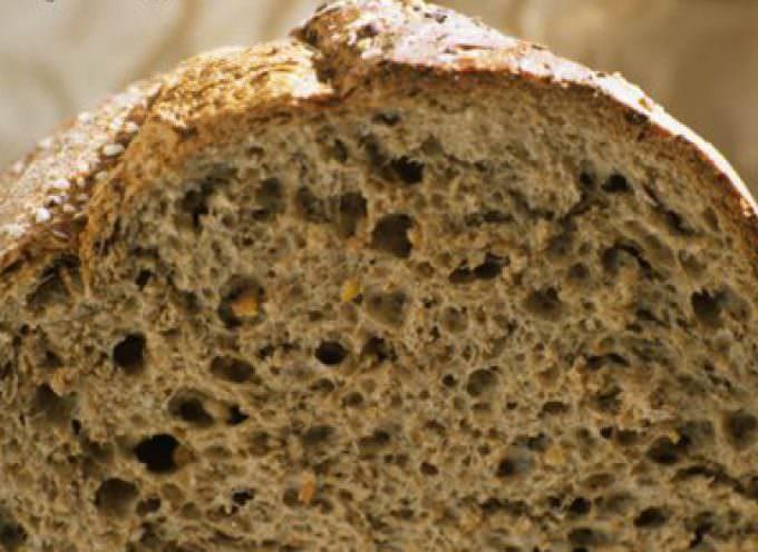 """Cereali, la Cia lancia lo """"Sos"""": semine a picco"""