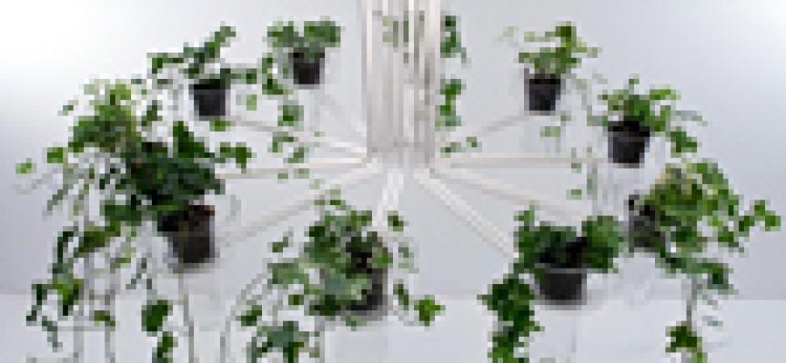 Nasce flora la lampada a sospensione che unisce la luce for Progetto domestico