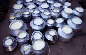 Quote latte: Marini (Coldiretti), non scherziamo con il fuoco