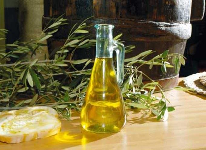 Una grande alleanza per rilanciare il mercato dell'olio di oliva
