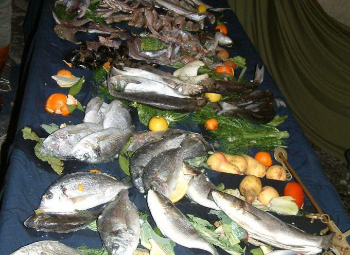 """""""Che pesci pigliare"""" L'UE in aiuto del consumatore"""