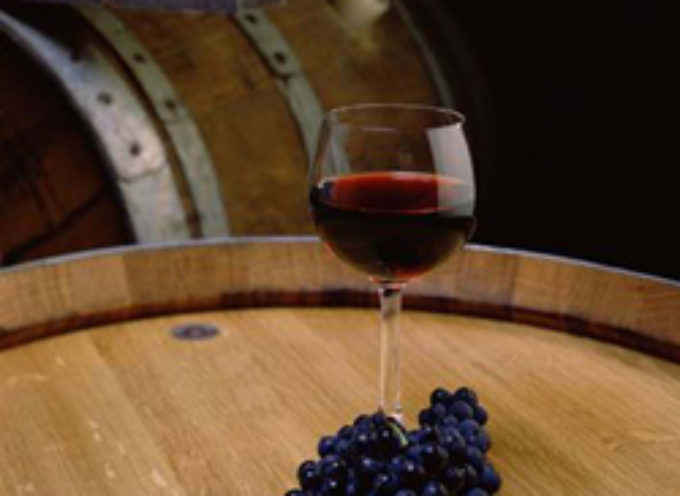 Turin Piedmont: The new Wine Show – The wine made in Italy