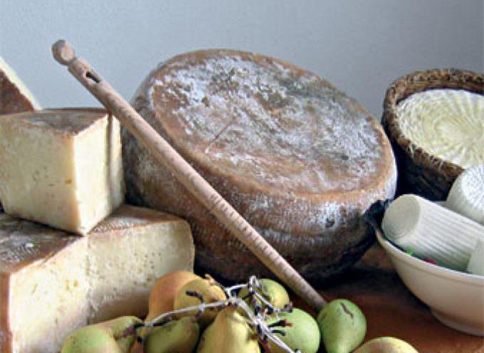 Brescia, sfida tra sommelier di formaggi