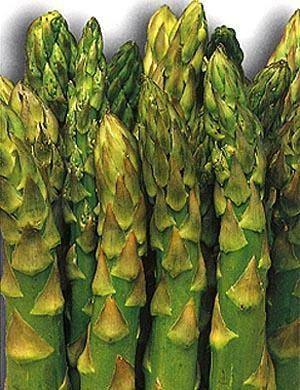 Asparagi: meno glucosio, più protetti dal diabete
