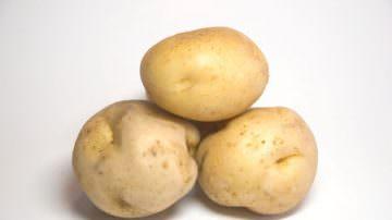 DNA: la scienza svela il genoma della patata