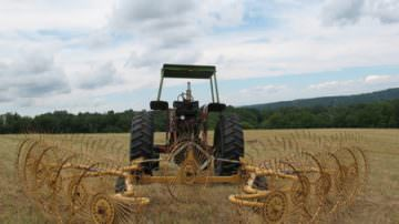Agricoltura: Politi lancia l'allarme