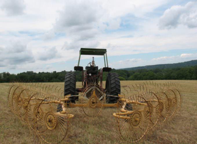 Pil: per l'agricoltura è sempre emergenza, imprese alle corde