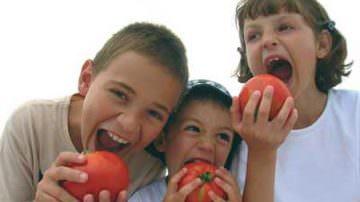 BioFach 2011, Fruit Logistica e l'arte tedesca delle Fiere. E in Italia? Meglio poche fiere fatte bene o tante sagre?