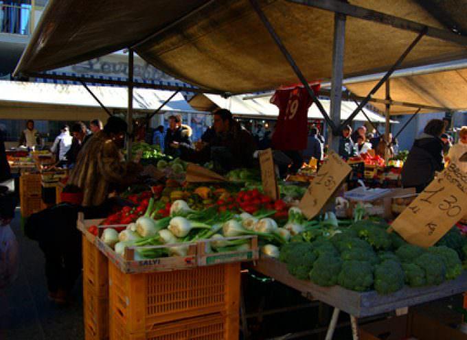 Toscana: Rallentano le vendite del settore agricolo soprattutto per olio, vino e fiori