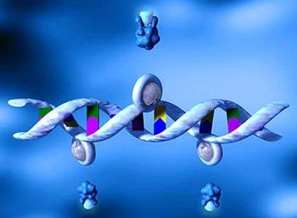 Cancro, create nanoparticelle efficaci come vettori nella terapia genica
